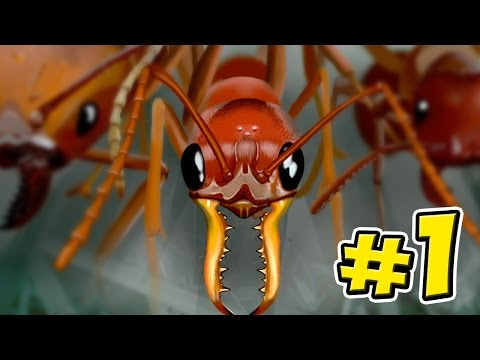 Ant Simulator - Empires Of The Undergrowth - Ep1