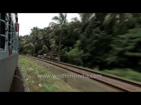 Journey to South India - Kerala