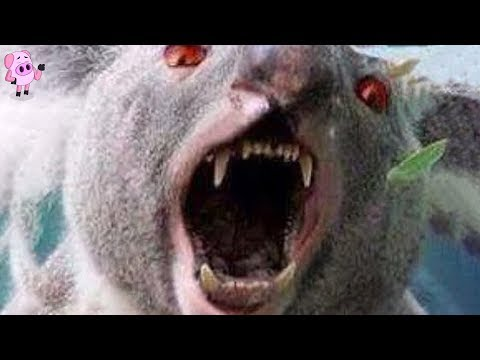Australias Scariest Urban Legends That May Actually Be True