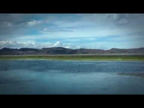 Expertos de Grandes Lagos visitan el Lago Tititcaca en Puno