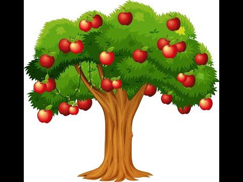 Mega Boney M Megamix