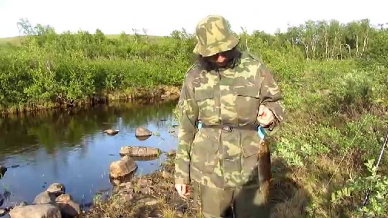 рыбалка на стрелке