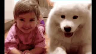 Funny Gifs 3