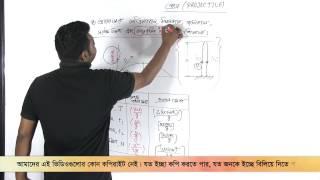 03. Some Expressions in Case of Projectile | প্রাসের ক্ষেত্রে কিছু রাশিমালা | OnnoRokom Pathshala