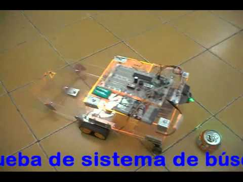 Robot recolector de objetos