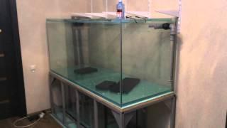 Аквариум на 1000 литров своими руками