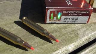 210 YARDS BALLISTICS GEL TEST_  .223 Hornady Superformance Varmint V-MAX