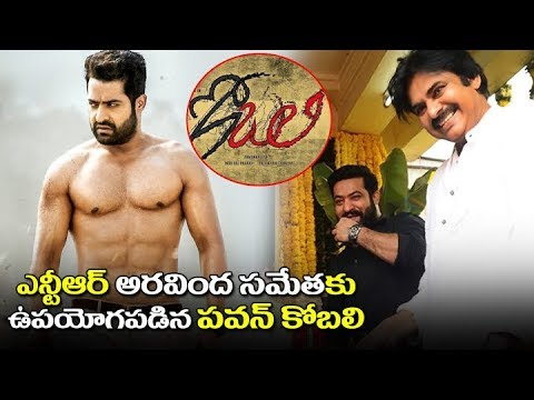 NTR Upcoming Movie Aravinda Sametha Latest News | Trivikram | Pawan Kalyan Kobali