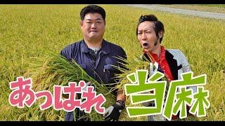 【上杉周大さん】2分30秒CM 当麻町オリジナル動画「育むマチ、とうま」