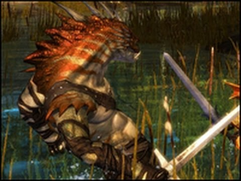 Looking For Games - Guild Wars 2 - Episode 4/4 : Le bilan