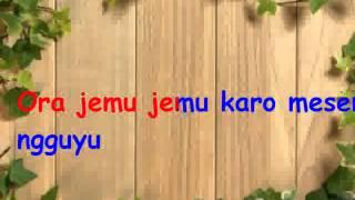 download lagu Karaoke Kembar Srikandi - Perahu Layar /koplo Tanpa Vokal gratis