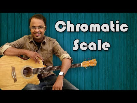 Chromatic Scale - Guitar Lesson For Beginners - How To play...