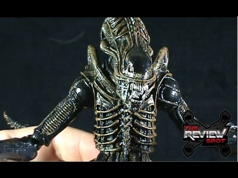 Toy Spot - Neca Aliens Xenomorph Warrior