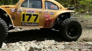 Baja Buggy RC Car Custom