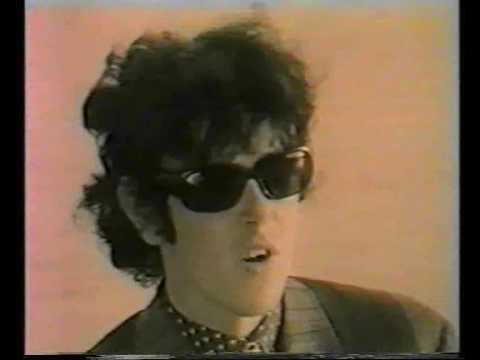 Donovan - Interview on a seashore
