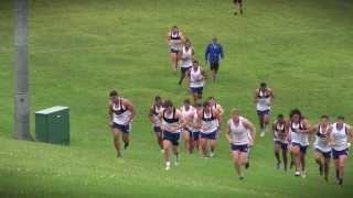 Blues pre-season training: field-based conditioning session