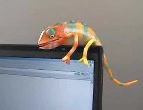 [Strapya Press Release] Chameleon USB Gadget Pet!