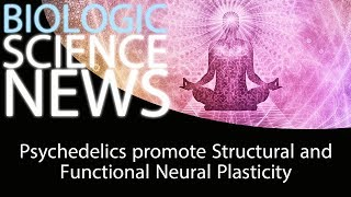 Science News - Psychedelics promote Structural and Functional Neural Plasticity
