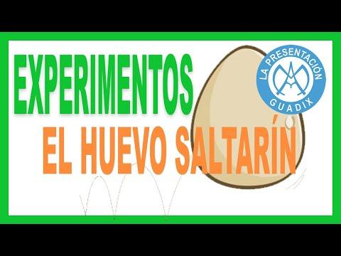 Experimento: Huevo saltarín (elasticidad) - Colegio de La Presentación de Guadix (Granada)