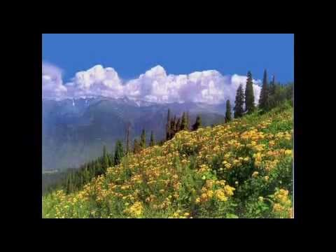 best song soni darti mili nagma best pakistan tarana 2011 nice song best wallpaper
