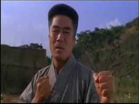 jet li's japanese and chinese martial arts