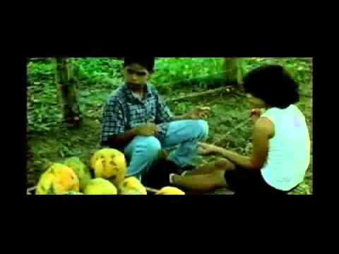 Andrea - en trailersdominicanos.com , trailers de peliculas dominicanas.