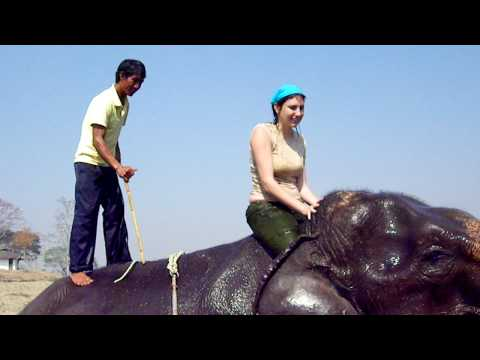 Rika and the Elephant