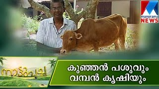 Nature farming for future | Manorama News | Nattupacha