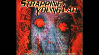 Watch Strapping Young Lad Skin Me video