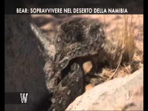 YTP ITA: Bear Grylls va nel deserto equipaggiato di disidratazioni