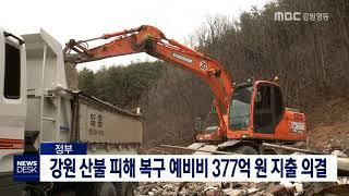 강원 산불 복구 예비비 377억 지출 의결