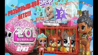СЕМЕЙКА ЛОЛ ХОЧУ ПИТОМЦА!+КОНКУРС ЛОЛ! Куклы ЛОЛ мультики #LOL SURPRISE #куклы #мультики