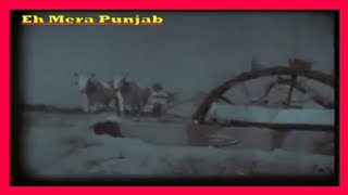 Persian Wheel (TINDA WALA KHOOH) Former Used In Punjab 1975