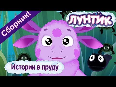 Истории в пруду 🐟 Лунтик 🐟 Сборник мультфильмов 2018