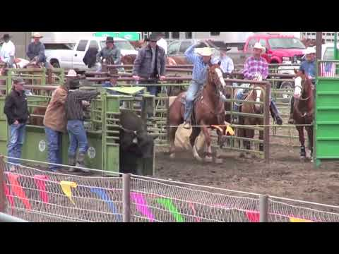 2013 Big Loop Rodeo Cruelty, Injury, Death