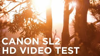 Canon SL2/200D HD Video Quality Test
