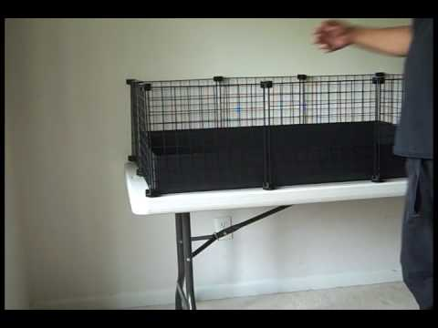 Why your c c guinea pig cage may need a bottom youtube for Making a c c cage