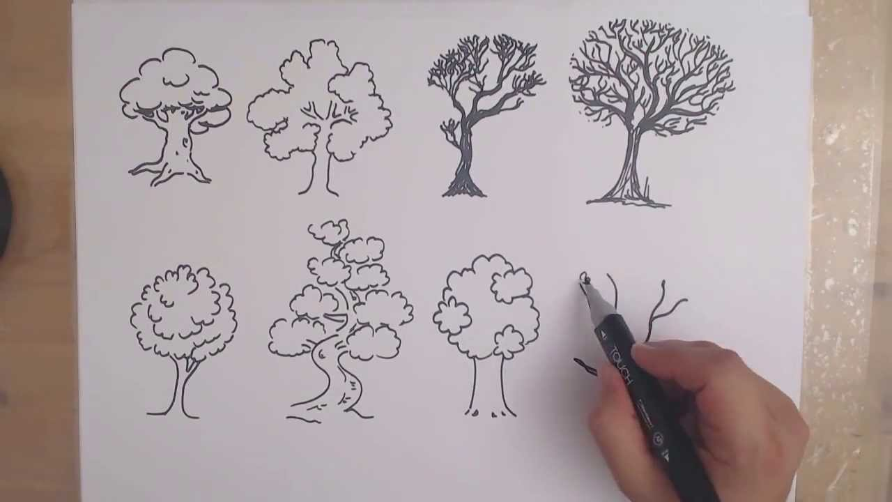 How to draw a tree 8 different ways drawing trees youtube Teach me how to draw a flower