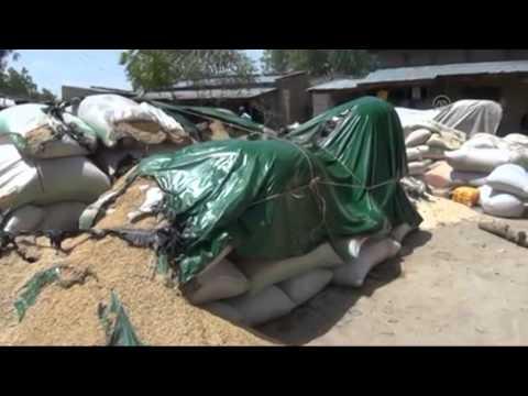 Boko Haram suicide attack on Zabarmari village in Nigeria