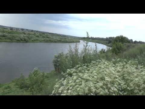 рыбалка в задонске на дону видео