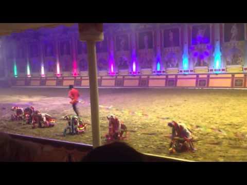арстистку затоптал конь на конном шоу в абрау дюрсо 30 августа 2015 года