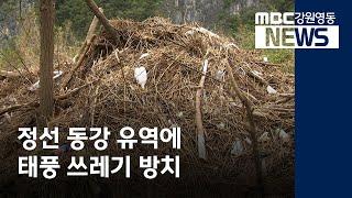 R]정선 동강 유역 태풍 쓰레기 눈살