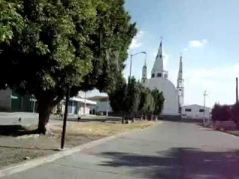 Nvo. Chupicuaro Guanajuato 2010
