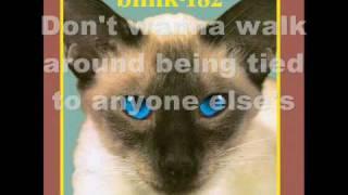 Watch Blink182 Strings video