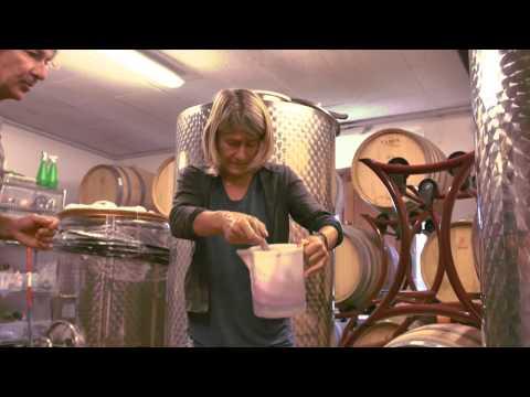 Poggio La Noce • Winemaking Philosophy