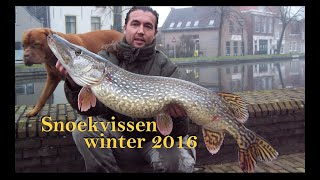 Snoekvissen najaar/winter 2016 - Pike fishing in winter