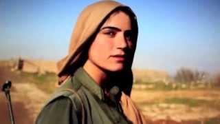 BOZ - Syrien