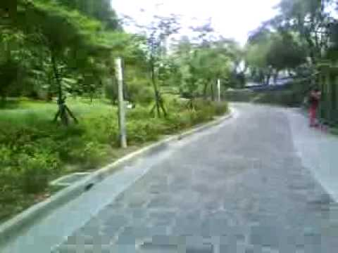 2009/04/09 台灣民主紀念館庭園步道/ The Garden of National Taiwan Democracy Memorial Hall Video
