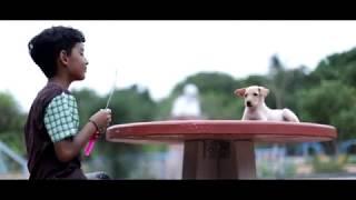 Compassion - Short Film