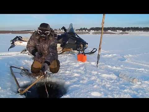 правило рыбалки печора весна сети